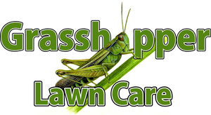 Grasshopper Lawn Care Services LLC, Lawn Care, Landscaping and Lawn Mowing